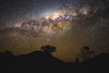 The night time sky showing the Milky Way and a silhouette of a tree on a hillside.